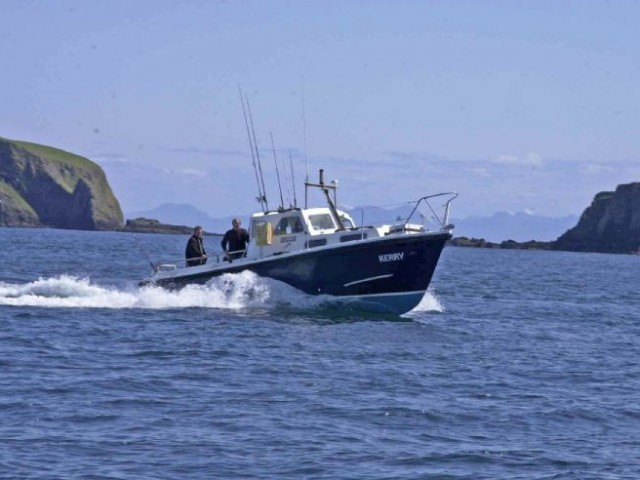Land a catch of plaice, cod or skate on a guided sea-fishing experience image