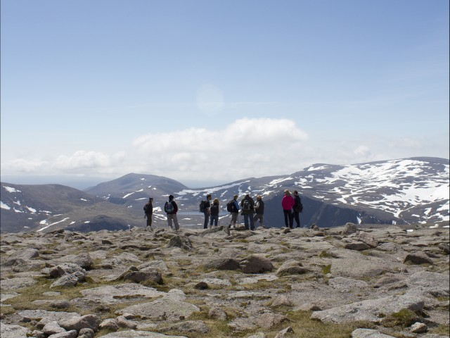 Head to the peaks of the Cairngorm National Park on a guided ranger walk to learn more about the wildlife, environment and nature of this wild and remote part of Scotland image